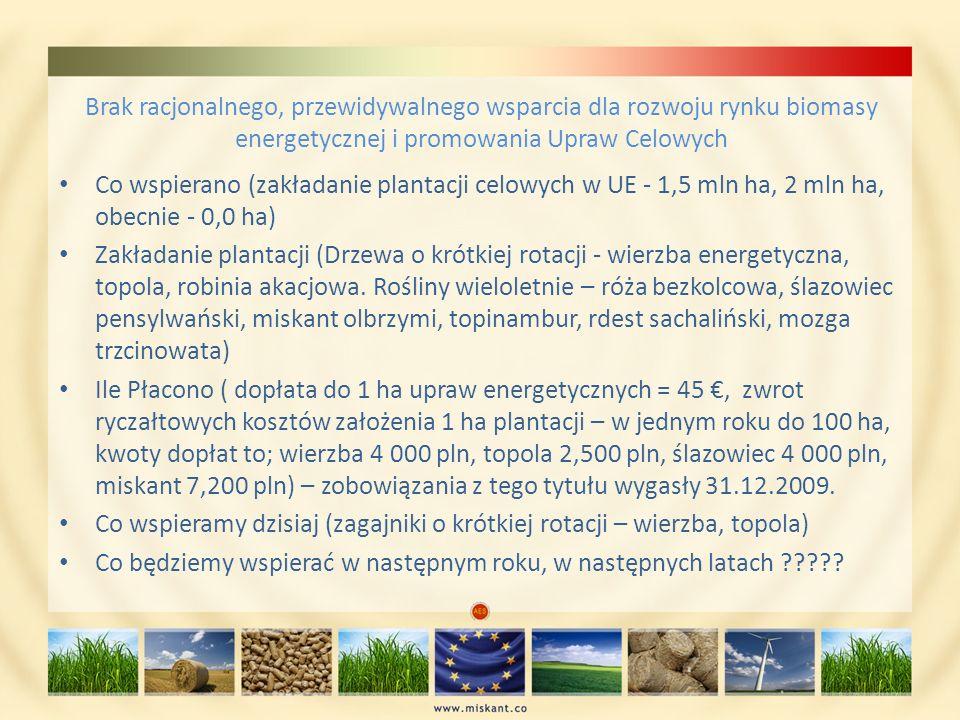 Brak racjonalnego, przewidywalnego wsparcia dla rozwoju rynku biomasy energetycznej i promowania Upraw Celowych