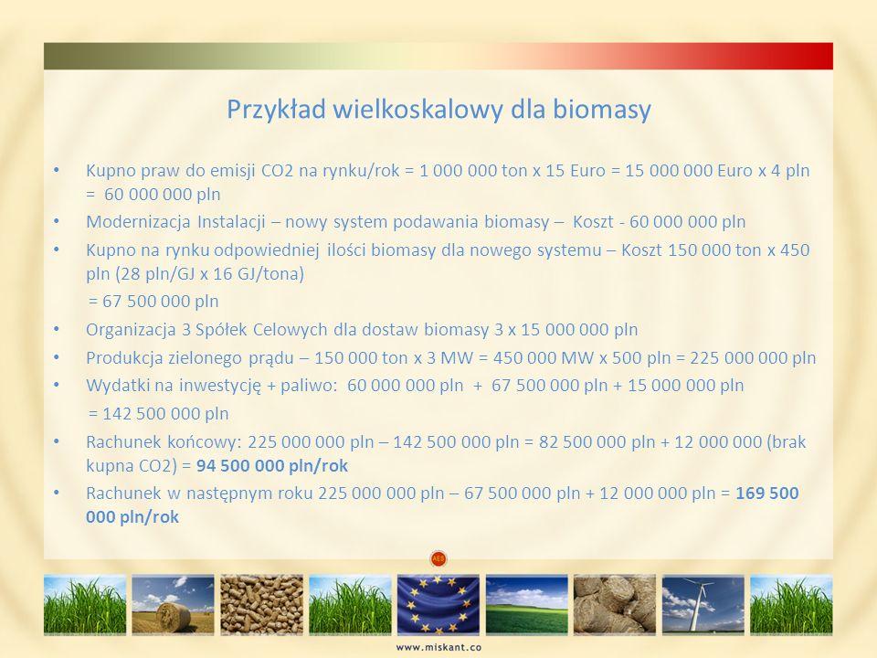 Przykład wielkoskalowy dla biomasy