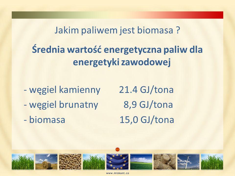 Jakim paliwem jest biomasa