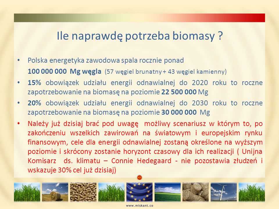 Ile naprawdę potrzeba biomasy