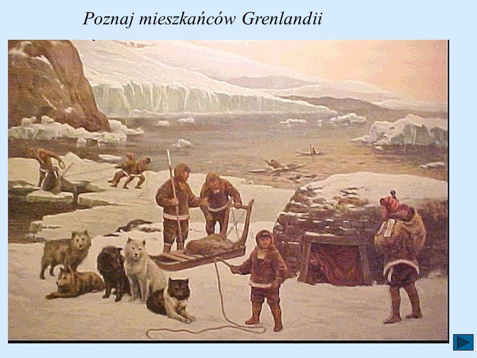 Poznaj mieszkańców Grenlandii