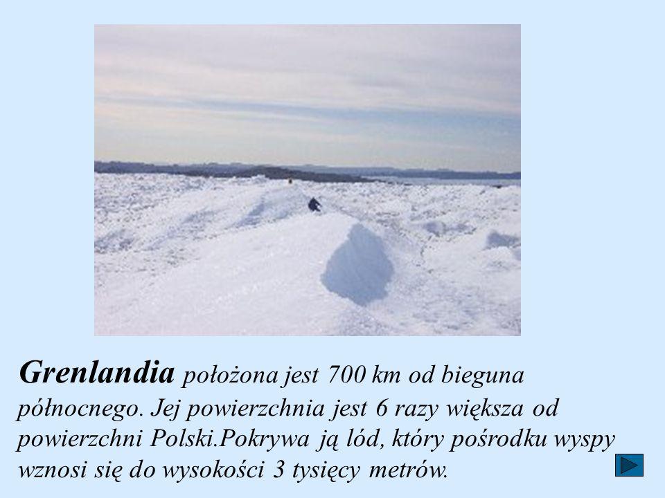 Grenlandia położona jest 700 km od bieguna północnego