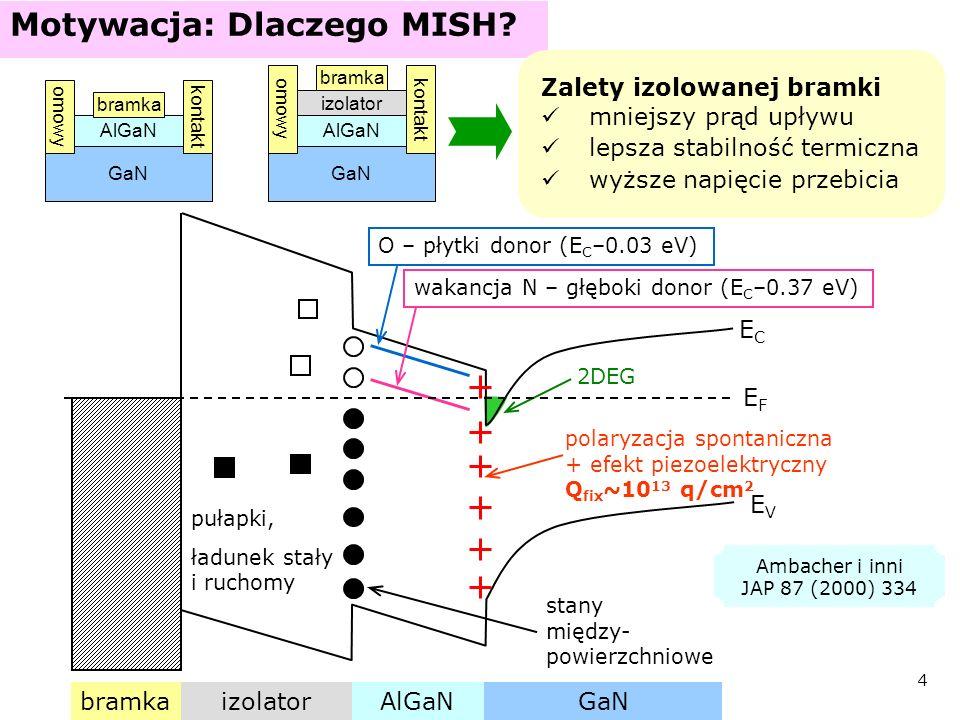 Motywacja: Dlaczego MISH