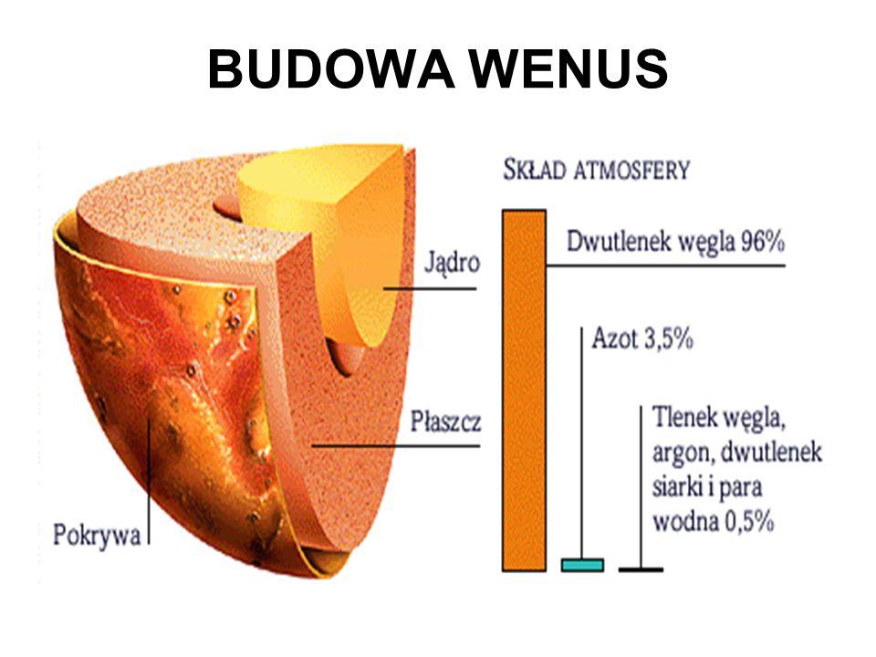 BUDOWA WENUS