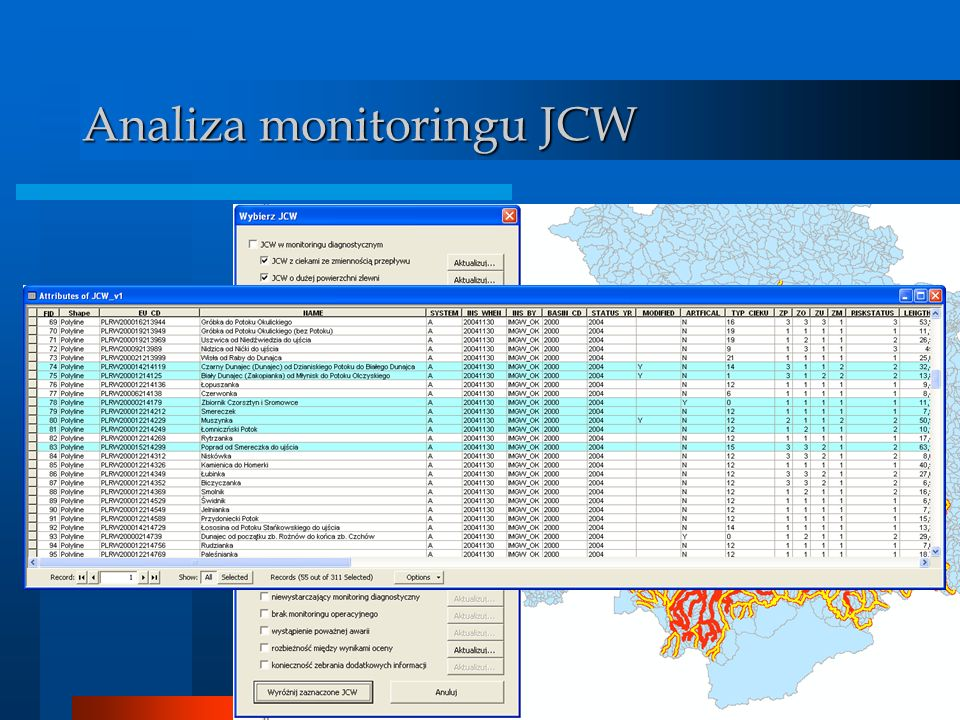 Analiza monitoringu JCW