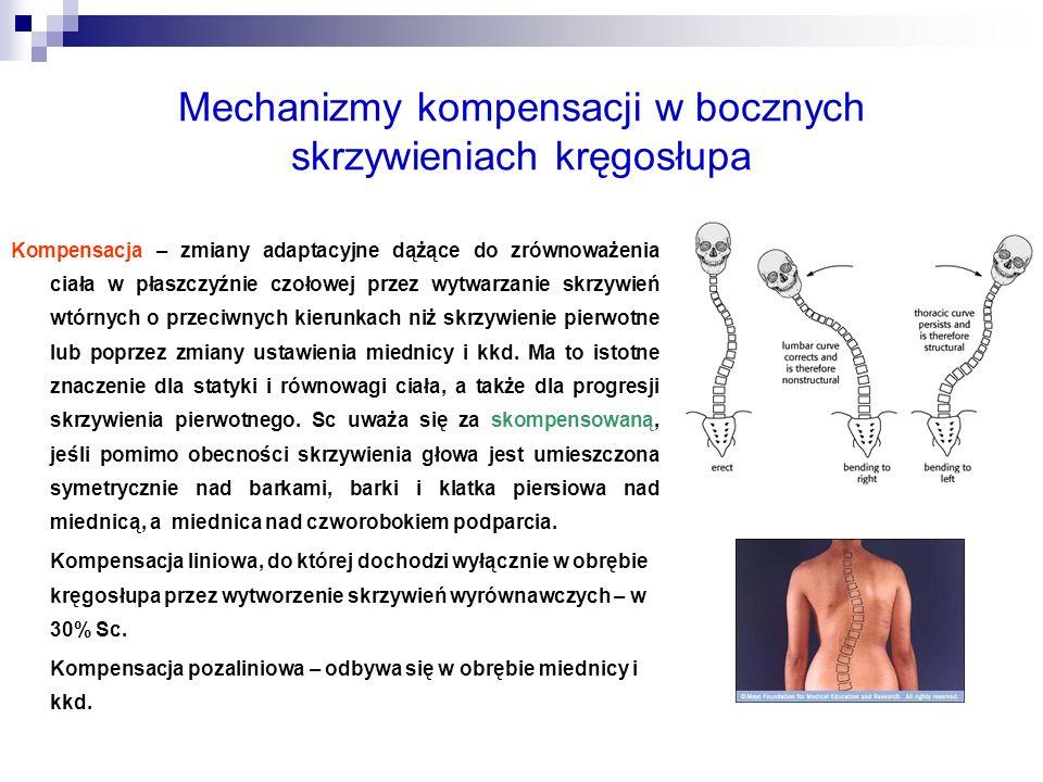 Mechanizmy kompensacji w bocznych skrzywieniach kręgosłupa
