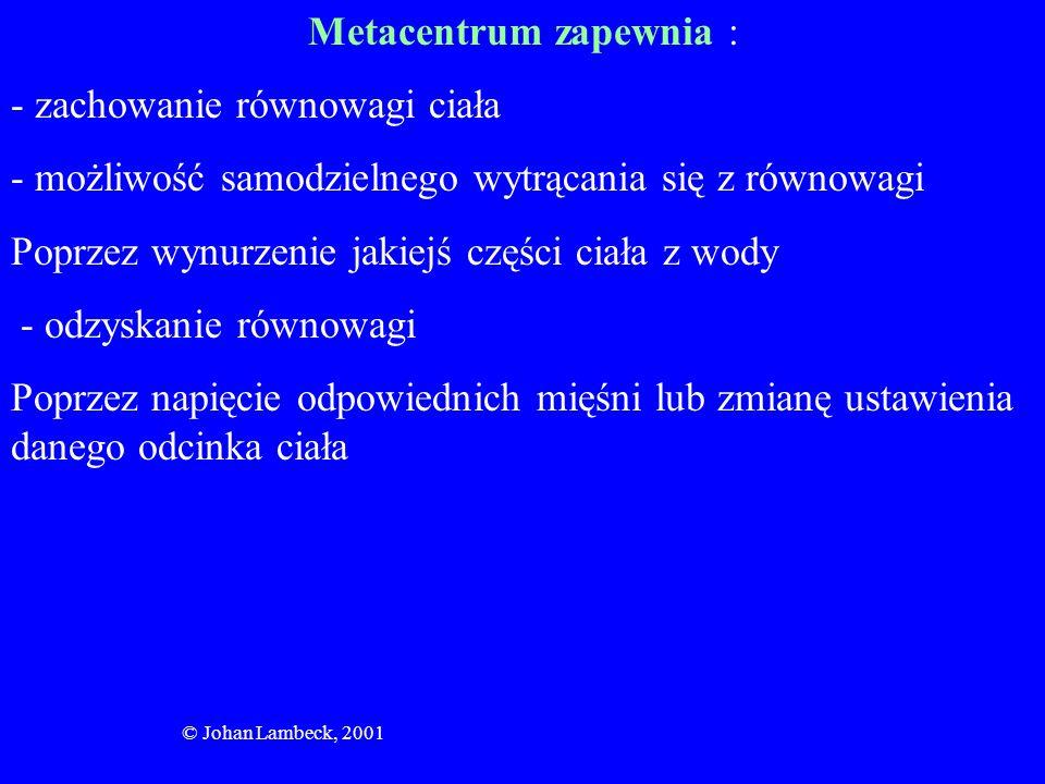 Metacentrum zapewnia :