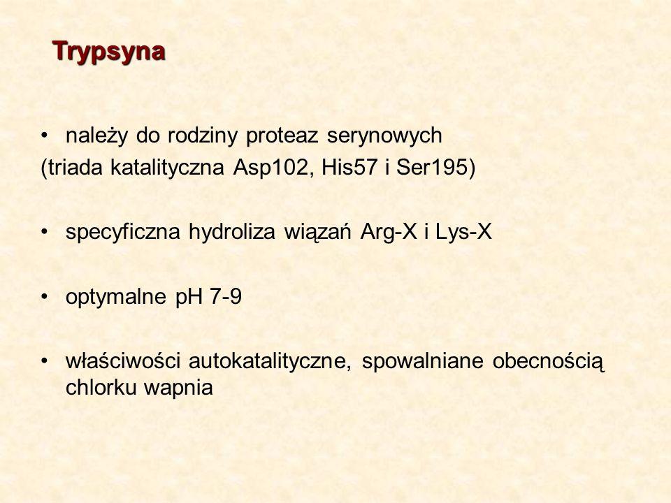 Trypsyna należy do rodziny proteaz serynowych