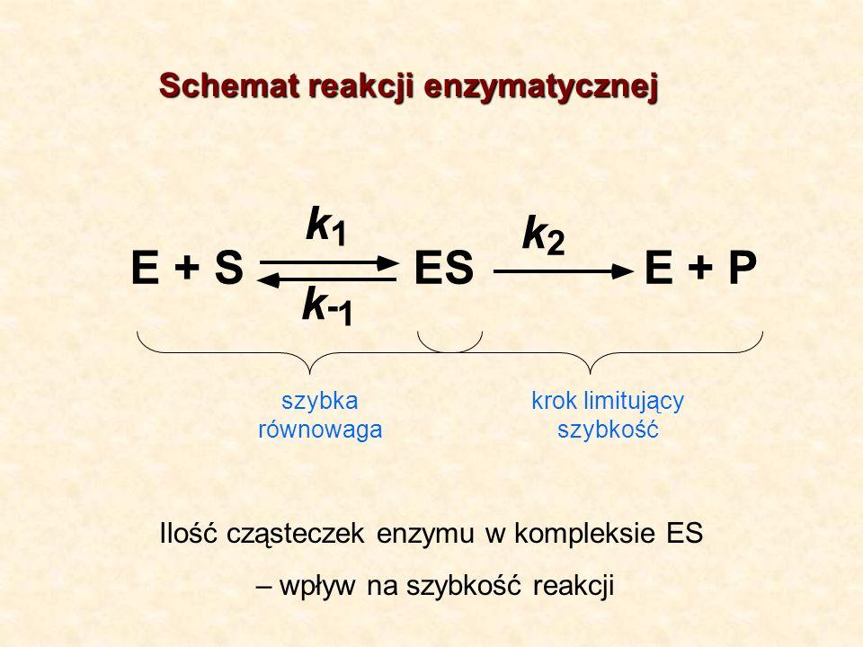 P E + S k 1 2 - Schemat reakcji enzymatycznej