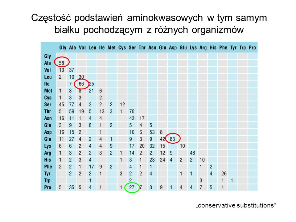 Częstość podstawień aminokwasowych w tym samym białku pochodzącym z różnych organizmów