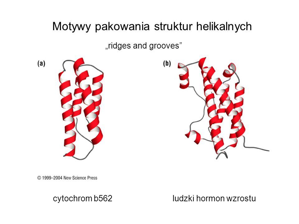 Motywy pakowania struktur helikalnych