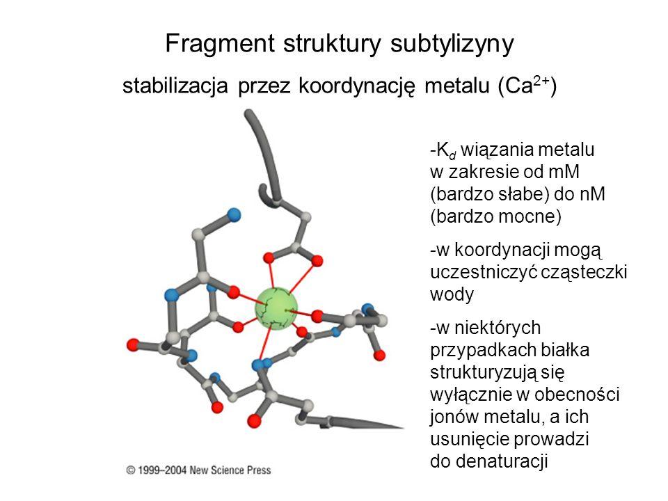 Fragment struktury subtylizyny