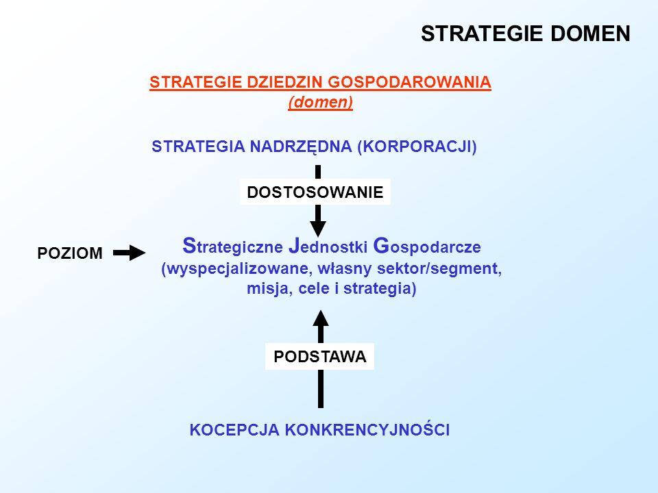 STRATEGIE DOMEN Strategiczne Jednostki Gospodarcze