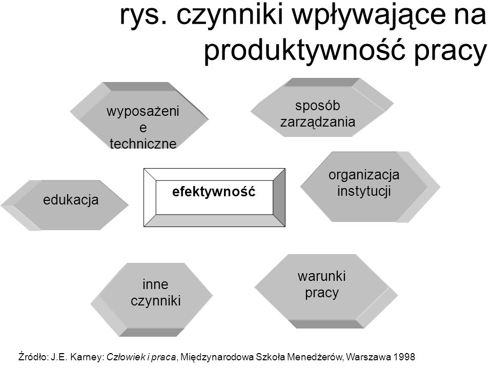 rys. czynniki wpływające na produktywność pracy