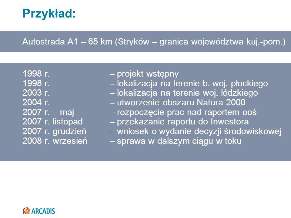Przykład: Autostrada A1 – 65 km (Stryków – granica województwa kuj.-pom.) 1998 r. – projekt wstępny.