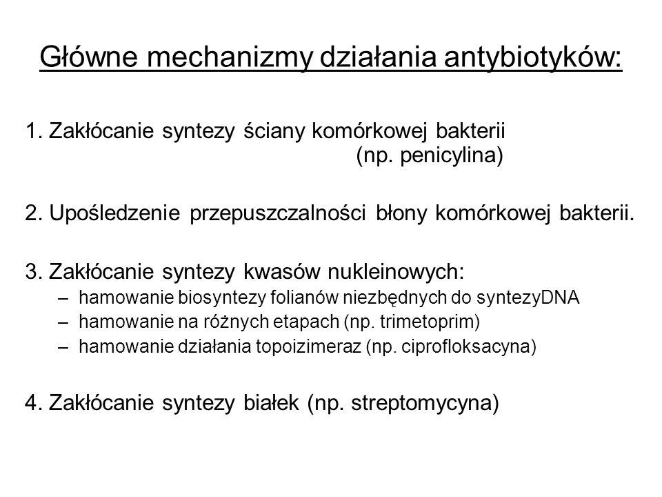 Główne mechanizmy działania antybiotyków: