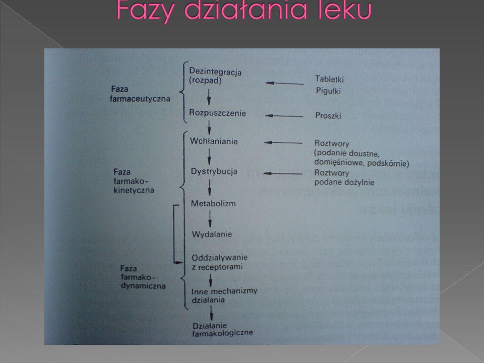 Fazy działania leku