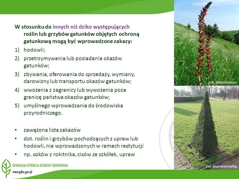 2) przetrzymywania lub posiadania okazów gatunków;