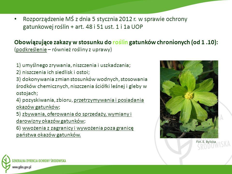 Rozporządzenie MŚ z dnia 5 stycznia 2012 r