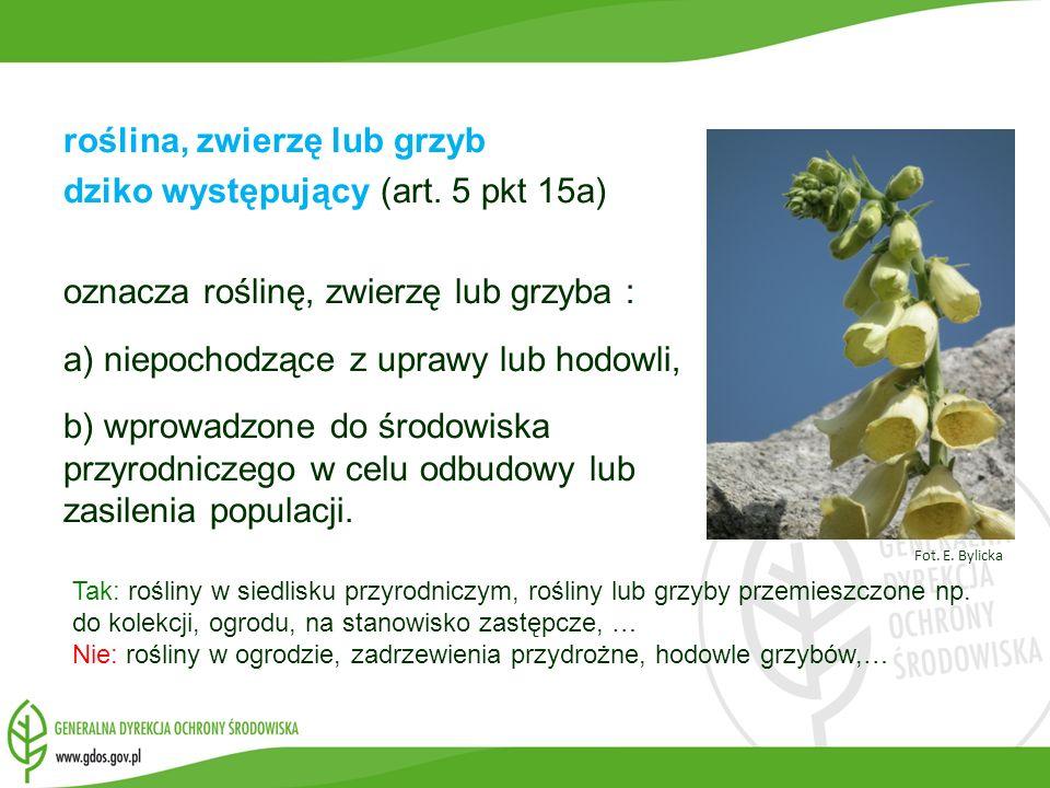 roślina, zwierzę lub grzyb dziko występujący (art. 5 pkt 15a)
