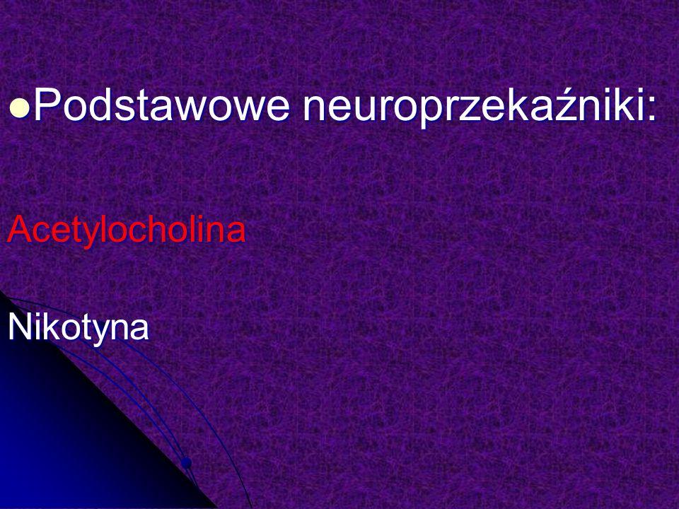 Podstawowe neuroprzekaźniki: