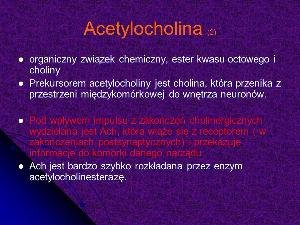 Acetylocholina (2) organiczny związek chemiczny, ester kwasu octowego i choliny.