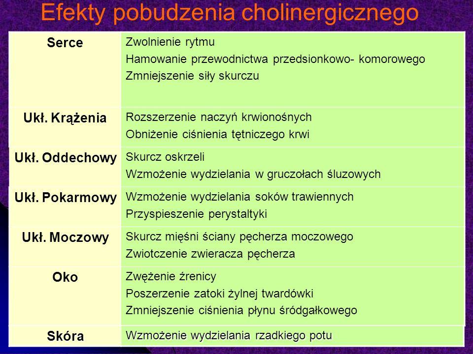 Efekty pobudzenia cholinergicznego