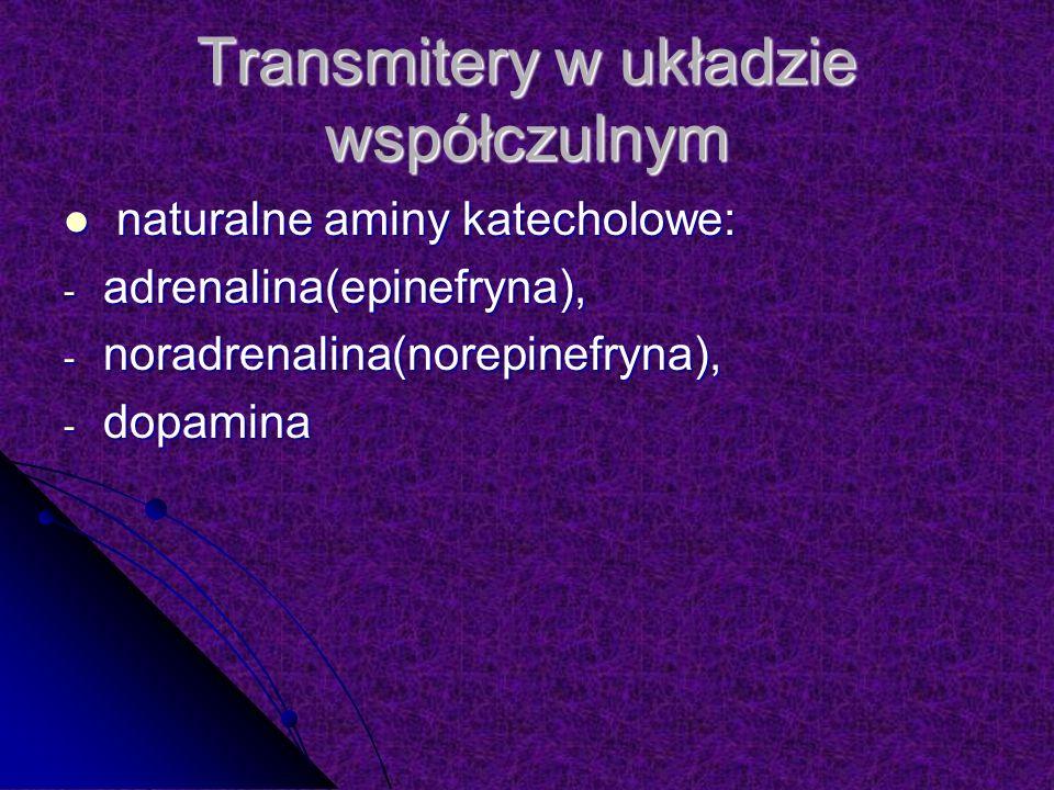 Transmitery w układzie współczulnym