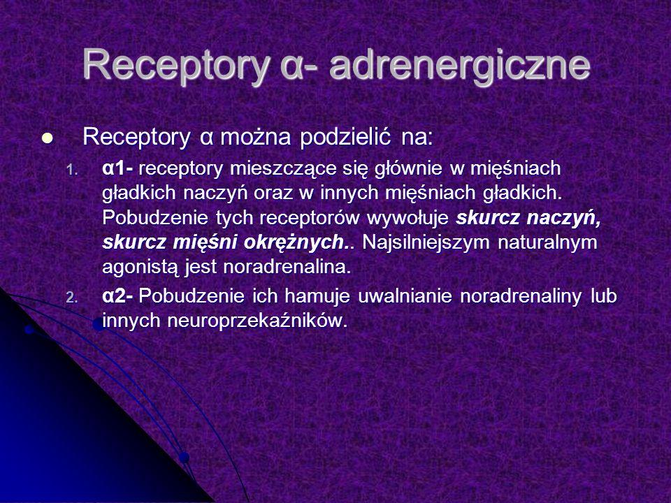 Receptory α- adrenergiczne