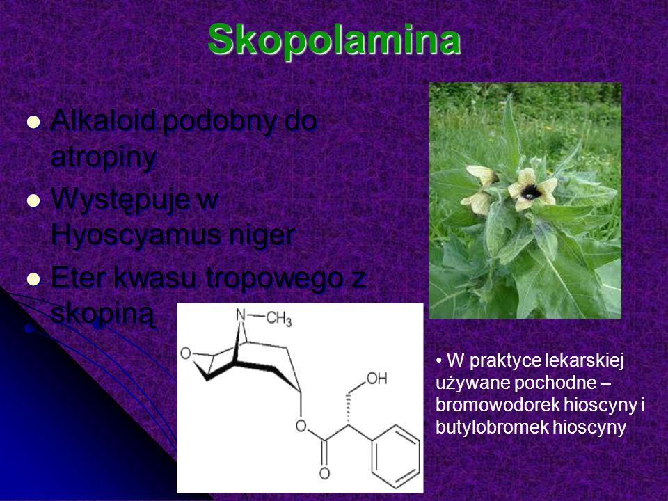 Skopolamina Alkaloid podobny do atropiny Występuje w Hyoscyamus niger