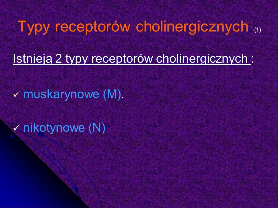 Typy receptorów cholinergicznych (1)
