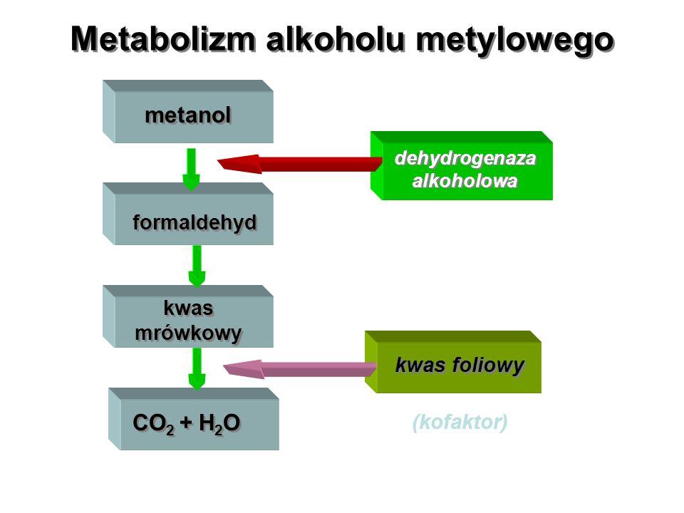 Metabolizm alkoholu metylowego