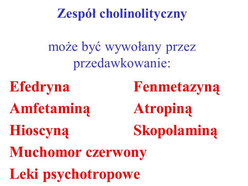 Zespół cholinolityczny może być wywołany przez przedawkowanie: