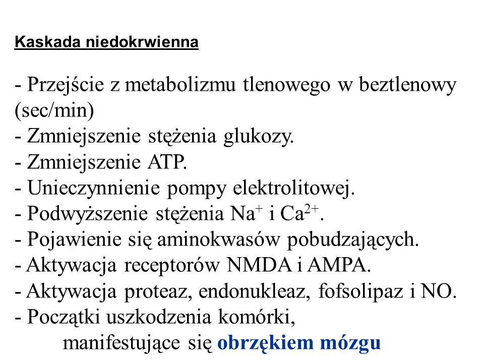 - Przejście z metabolizmu tlenowego w beztlenowy (sec/min)