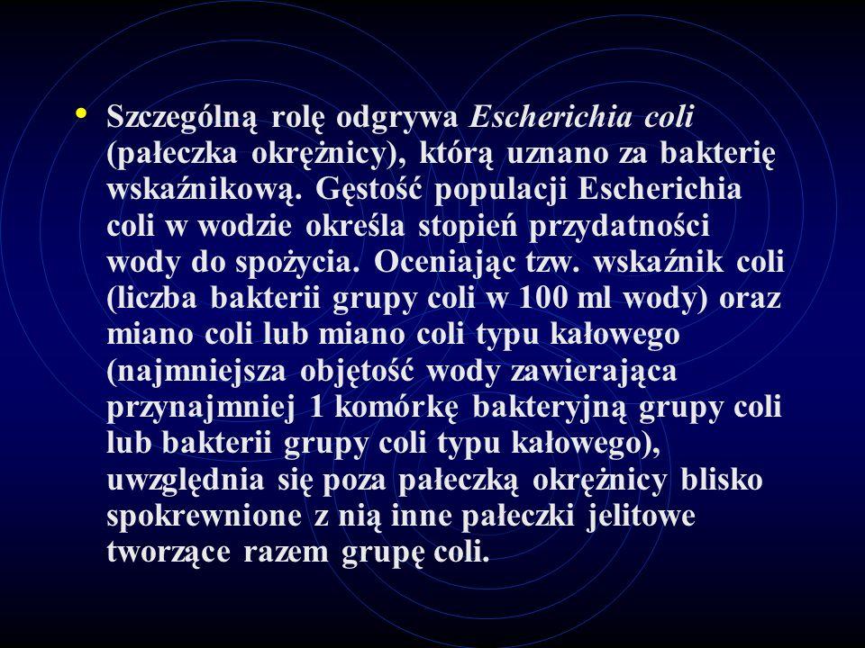 Szczególną rolę odgrywa Escherichia coli (pałeczka okrężnicy), którą uznano za bakterię wskaźnikową.