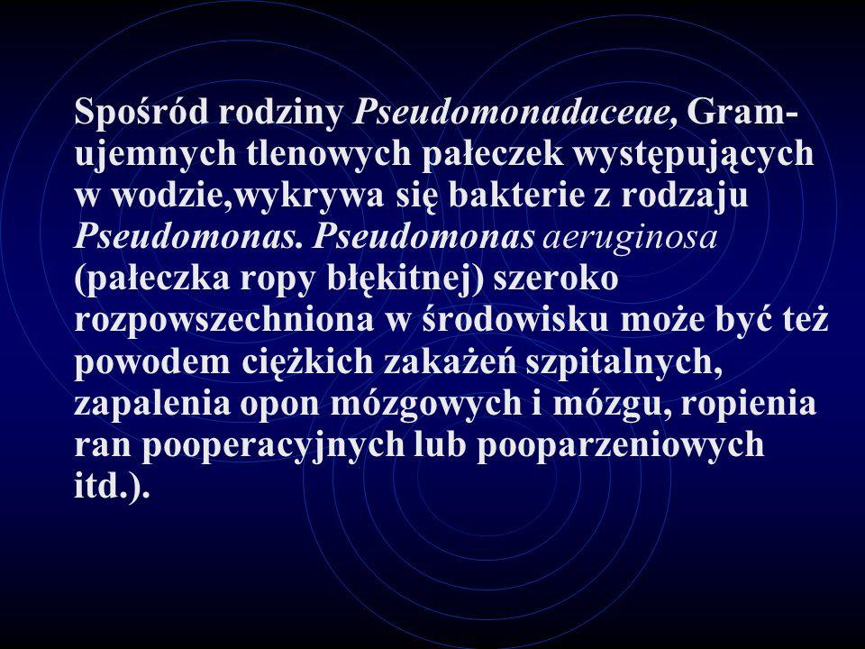 Spośród rodziny Pseudomonadaceae, Gram-ujemnych tlenowych pałeczek występujących w wodzie,wykrywa się bakterie z rodzaju Pseudomonas.