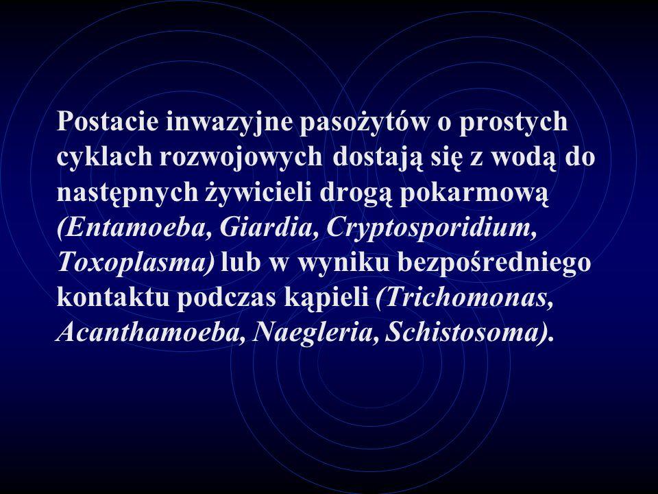 Postacie inwazyjne pasożytów o prostych cyklach rozwojowych dostają się z wodą do następnych żywicieli drogą pokarmową (Entamoeba, Giardia, Cryptosporidium, Toxoplasma) lub w wyniku bezpośredniego kontaktu podczas kąpieli (Trichomonas, Acanthamoeba, Naegleria, Schistosoma).