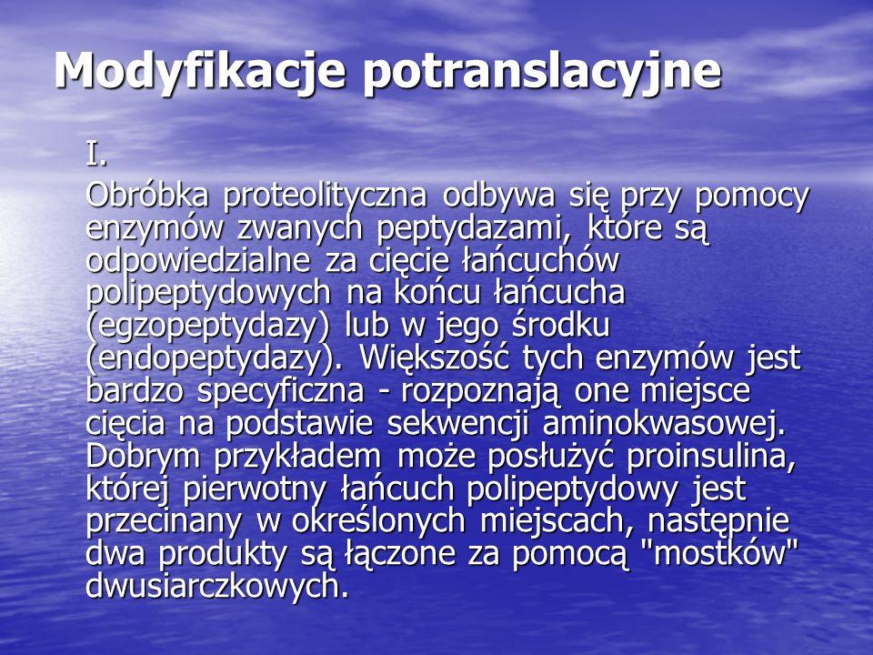 Modyfikacje potranslacyjne