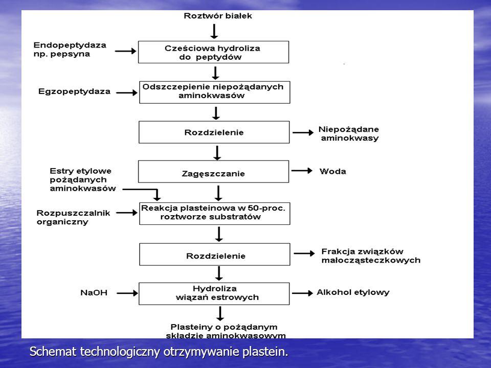 Schemat technologiczny otrzymywanie plastein.