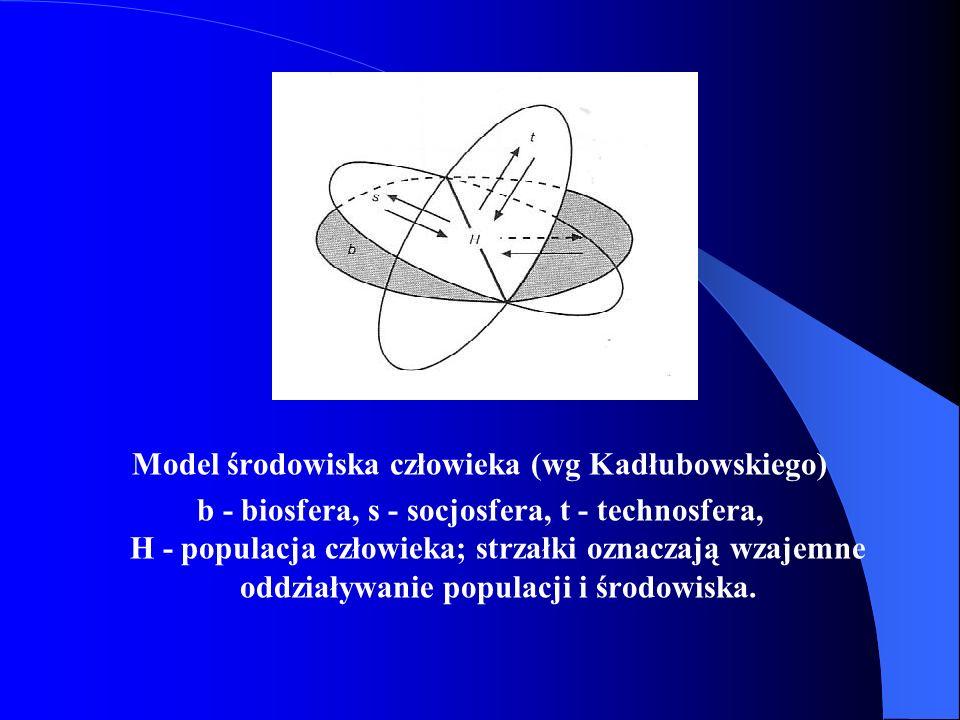 Model środowiska człowieka (wg Kadłubowskiego)