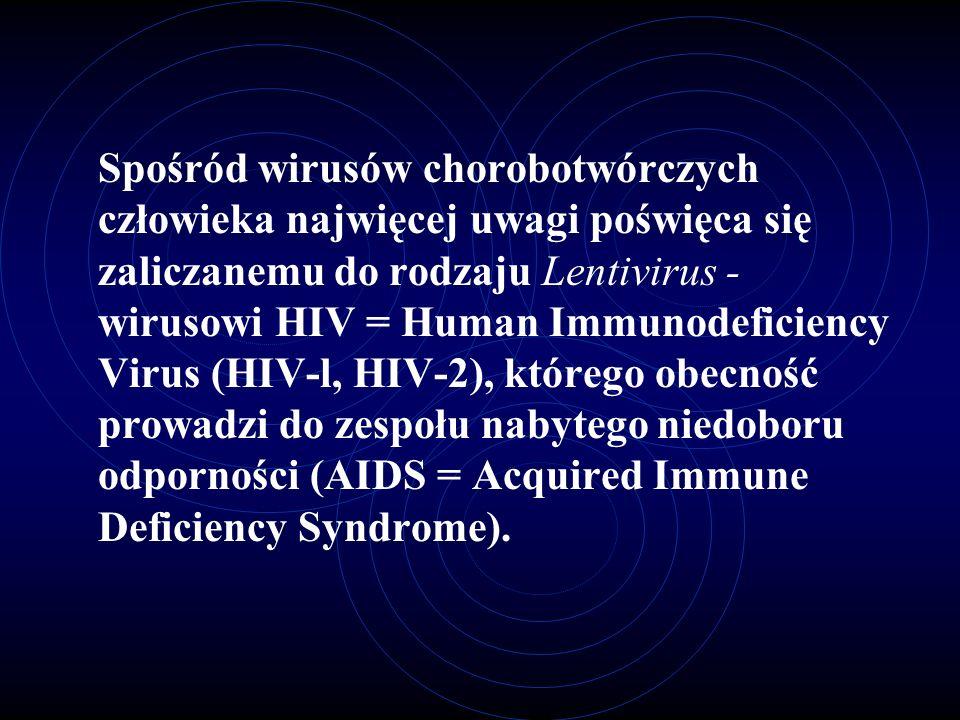 Spośród wirusów chorobotwórczych człowieka najwięcej uwagi poświęca się zaliczanemu do rodzaju Lentivirus - wirusowi HIV = Human Immunodeficiency Virus (HIV-l, HIV-2), którego obecność prowadzi do zespołu nabytego niedoboru odporności (AIDS = Acquired Immune Deficiency Syndrome).
