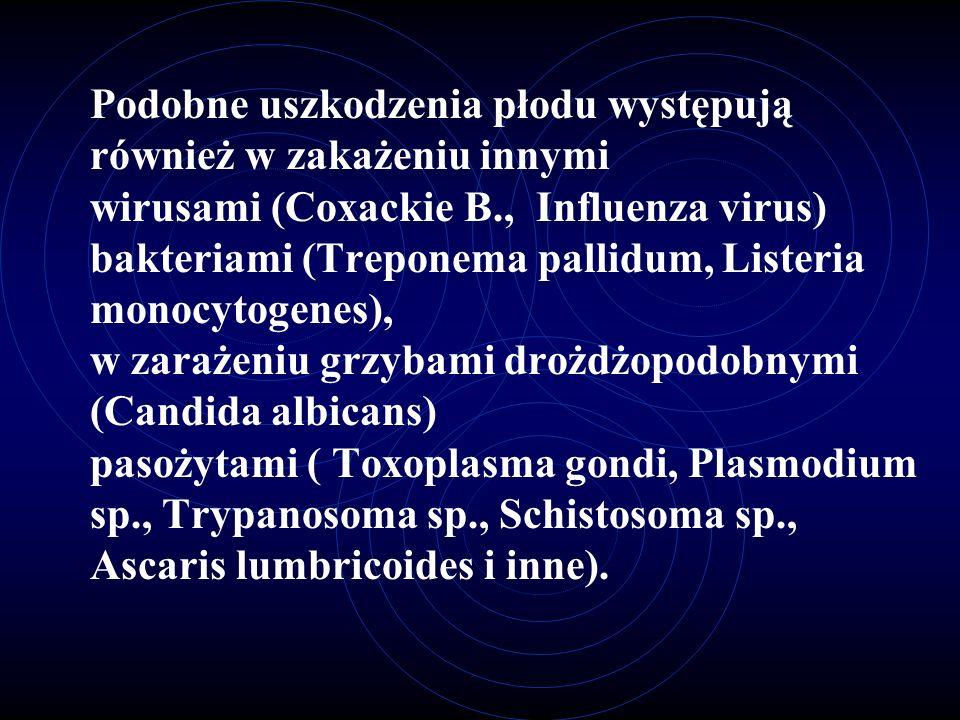 Podobne uszkodzenia płodu występują również w zakażeniu innymi wirusami (Coxackie B., Influenza virus) bakteriami (Treponema pallidum, Listeria monocytogenes), w zarażeniu grzybami drożdżopodobnymi (Candida albicans) pasożytami ( Toxoplasma gondi, Plasmodium sp., Trypanosoma sp., Schistosoma sp., Ascaris lumbricoides i inne).
