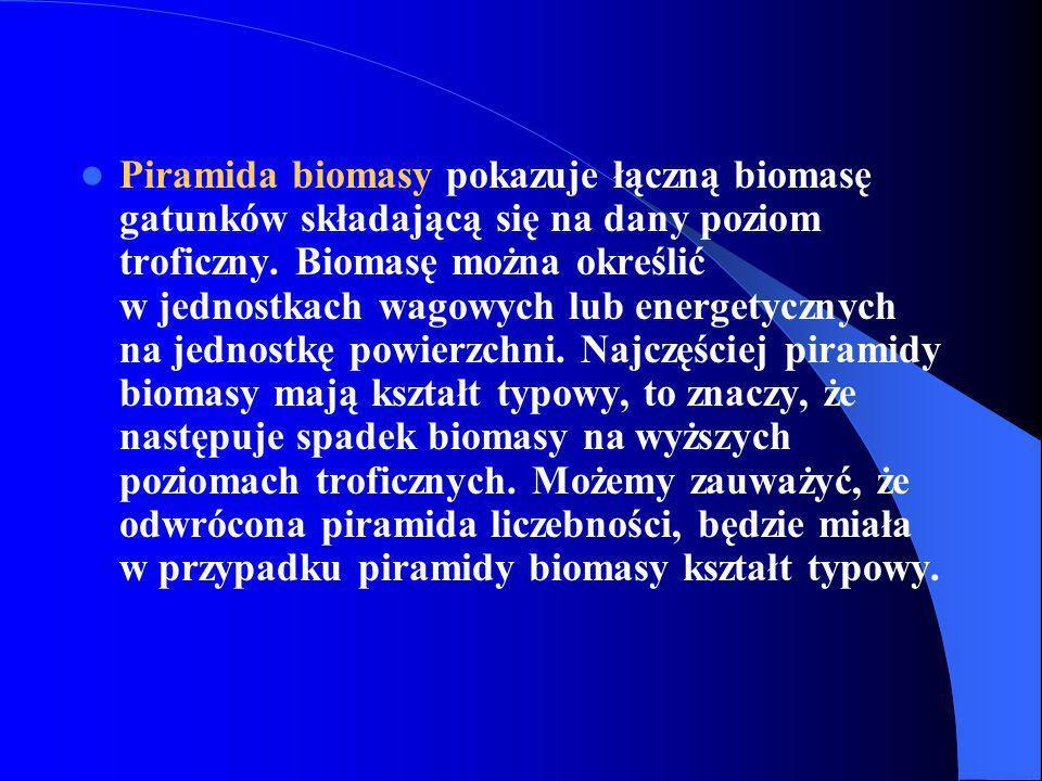Piramida biomasy pokazuje łączną biomasę gatunków składającą się na dany poziom troficzny.