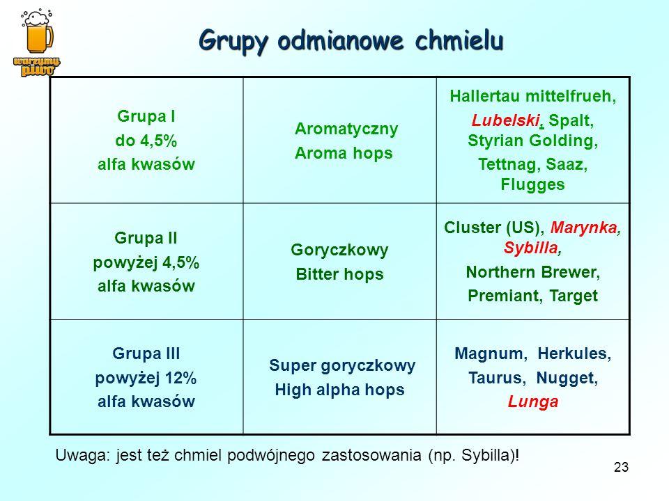 Grupy odmianowe chmielu