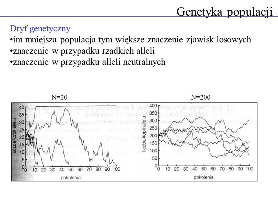 Genetyka populacji Dryf genetyczny