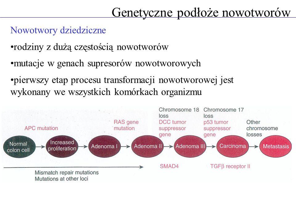 Genetyczne podłoże nowotworów