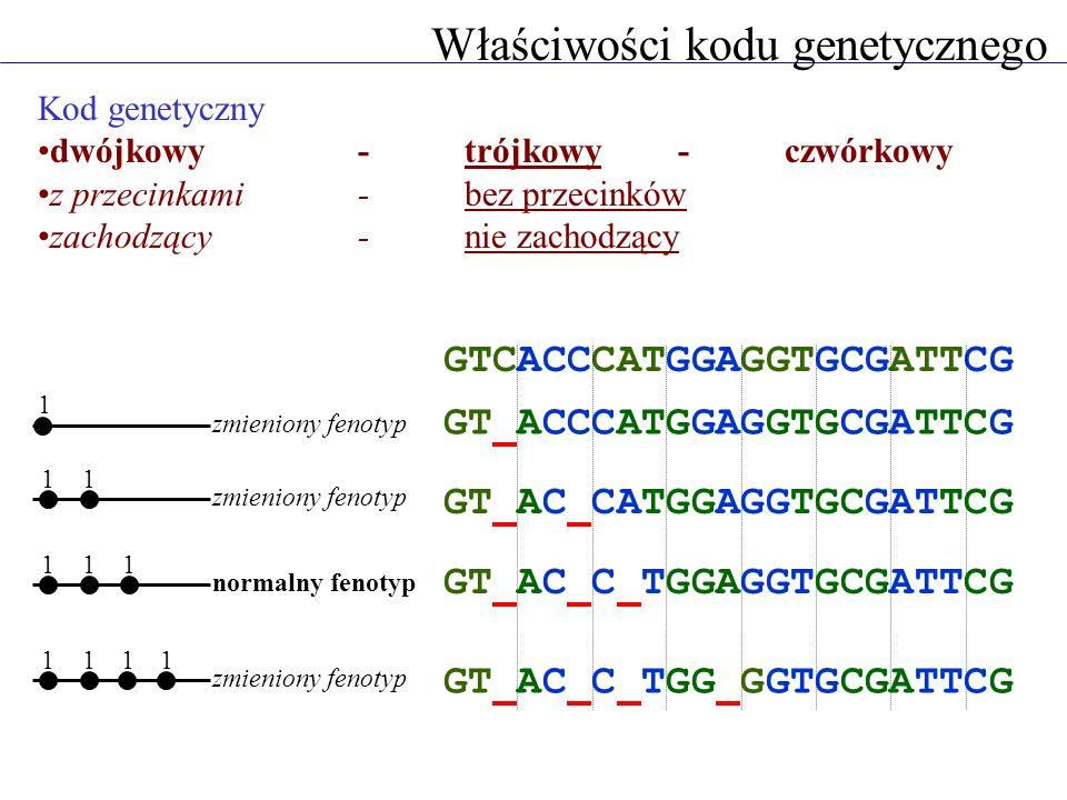 Właściwości kodu genetycznego