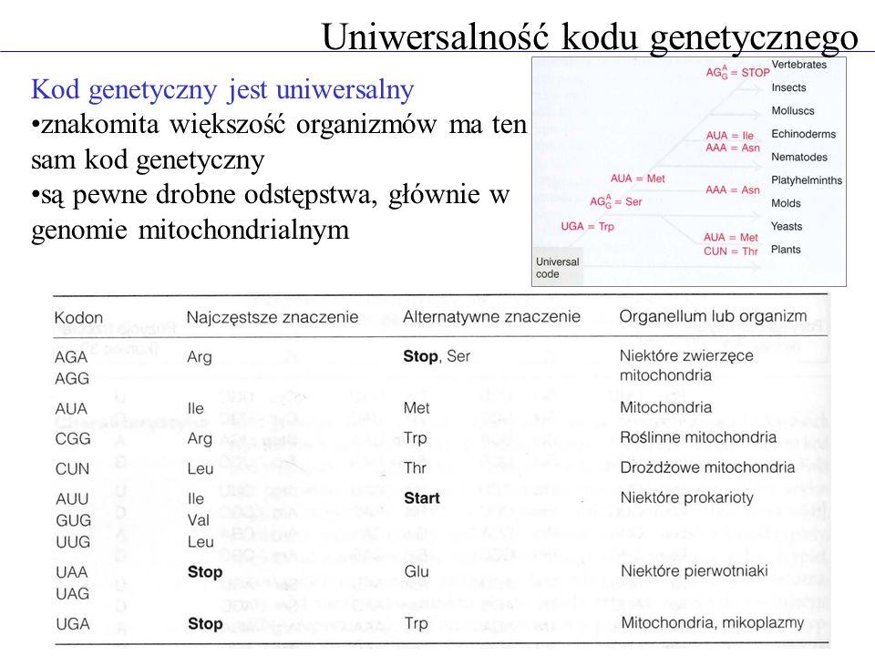 Uniwersalność kodu genetycznego