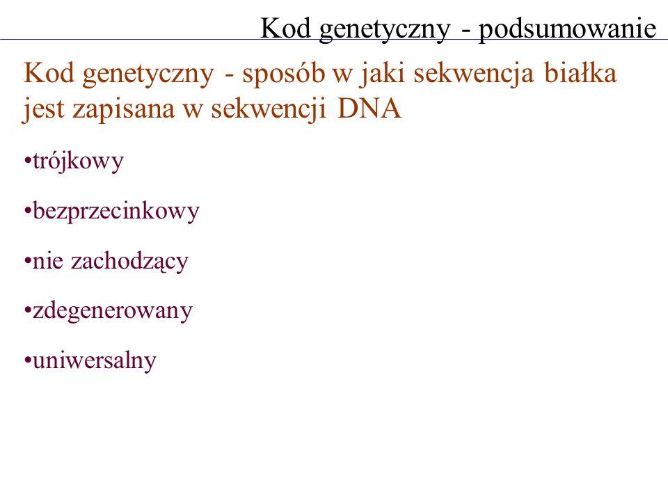Kod genetyczny - podsumowanie