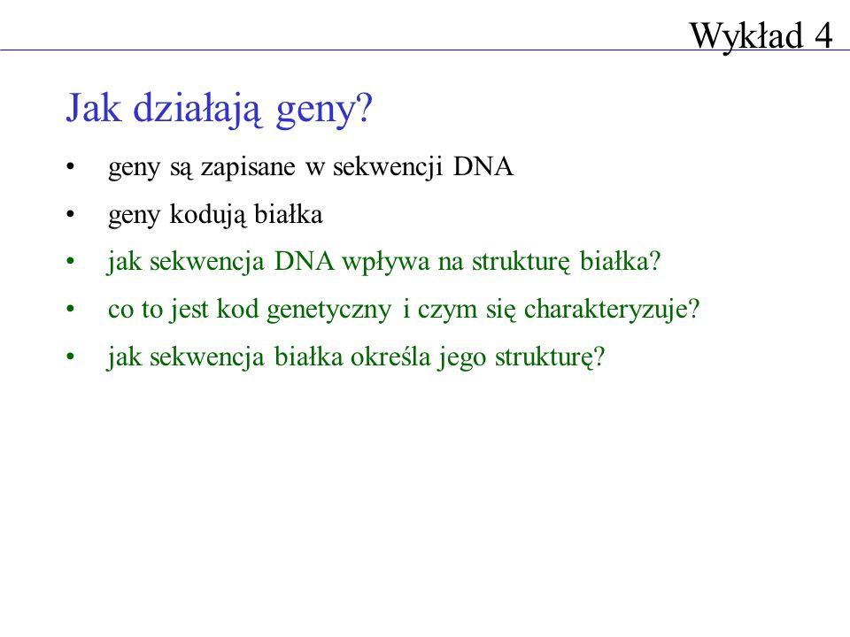 Jak działają geny Wykład 4 geny są zapisane w sekwencji DNA